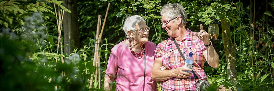 Identifying Signs and Symptoms of Dementia