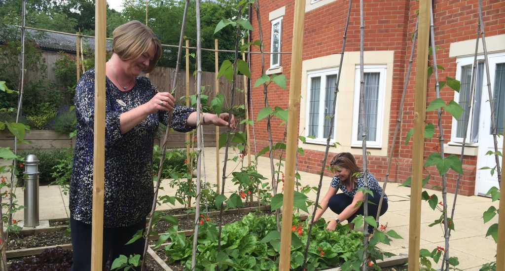 Alexandra Grange wins 'Best Residential and Care Home Garden' at Wokingham Town Council's Green Fingers competition