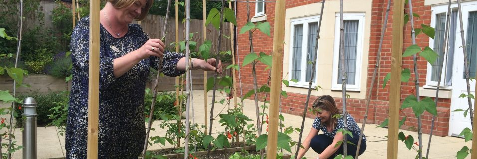 Alexandra Grange wins Wokingham Green Fingers competition