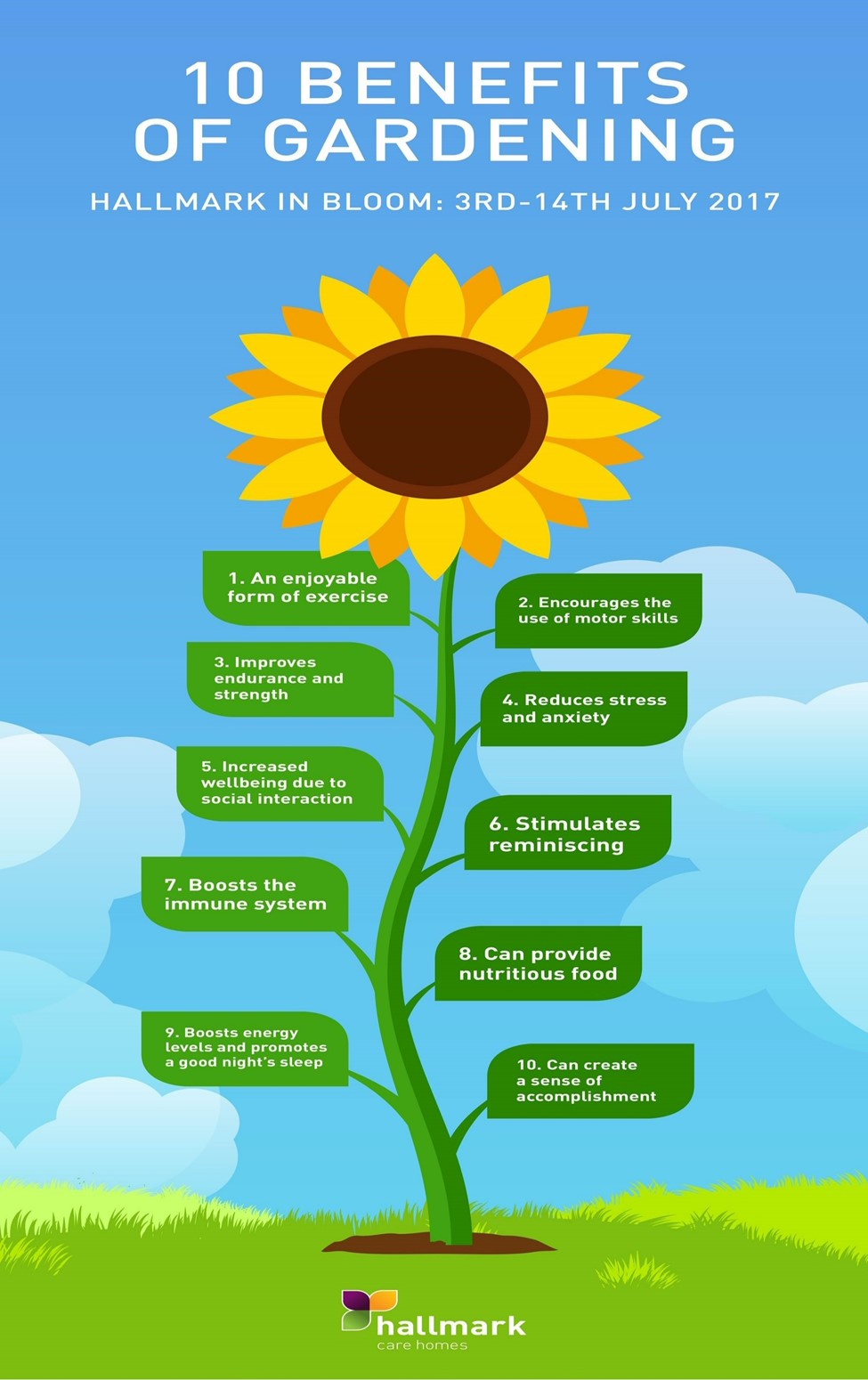 10 Benefits of Gardening