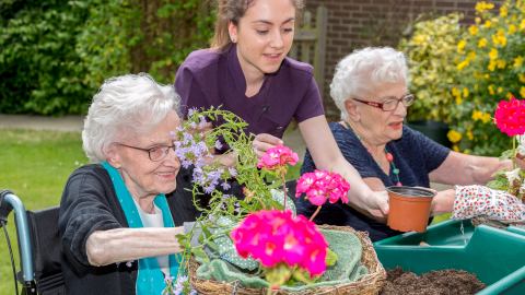 The Hallmark Care Homes Dementia Strategy