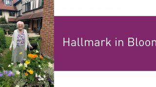 Hallmark in Bloom – this year's winners!