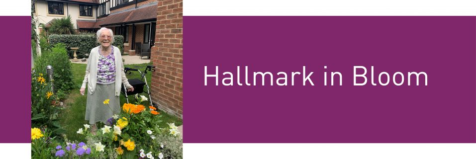 Hallmark Care Homes compete in virtual Hallmark in Bloom