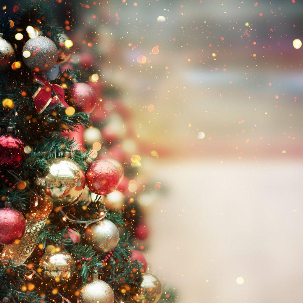 Bucklesham Grange to host festive events in December