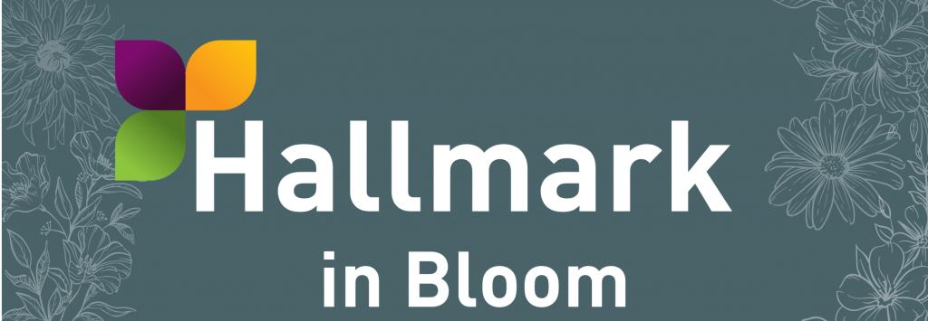 Hallmark care homes compete in Hallmark in Bloom